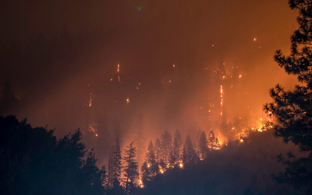 Lessons To Learn From the Cache Creek Fire
